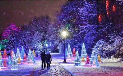 The Ultimate Guide to the Niagara Falls Winter Festival of Lights